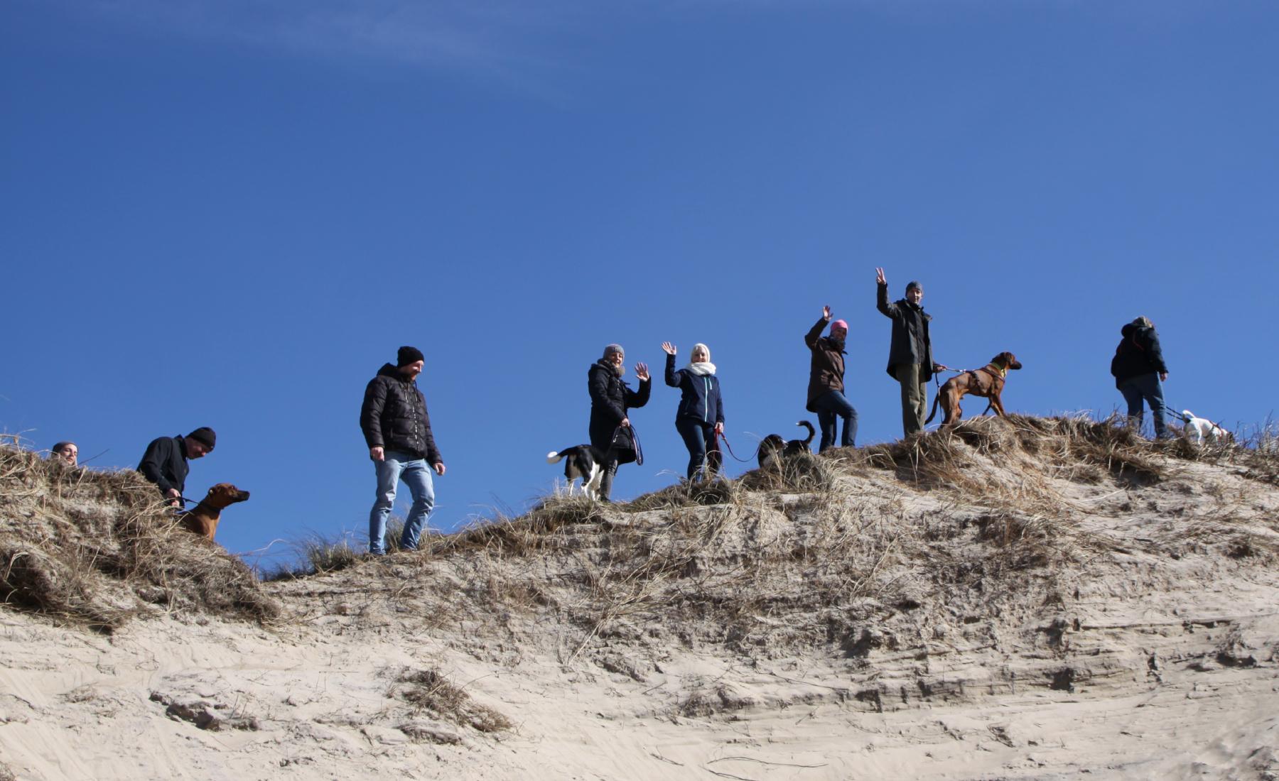 Bootcamps - Hundeakademie RudelHerzen Stefanie Baumer