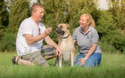 Tierschutzhund und Hunde aus dem Ausland