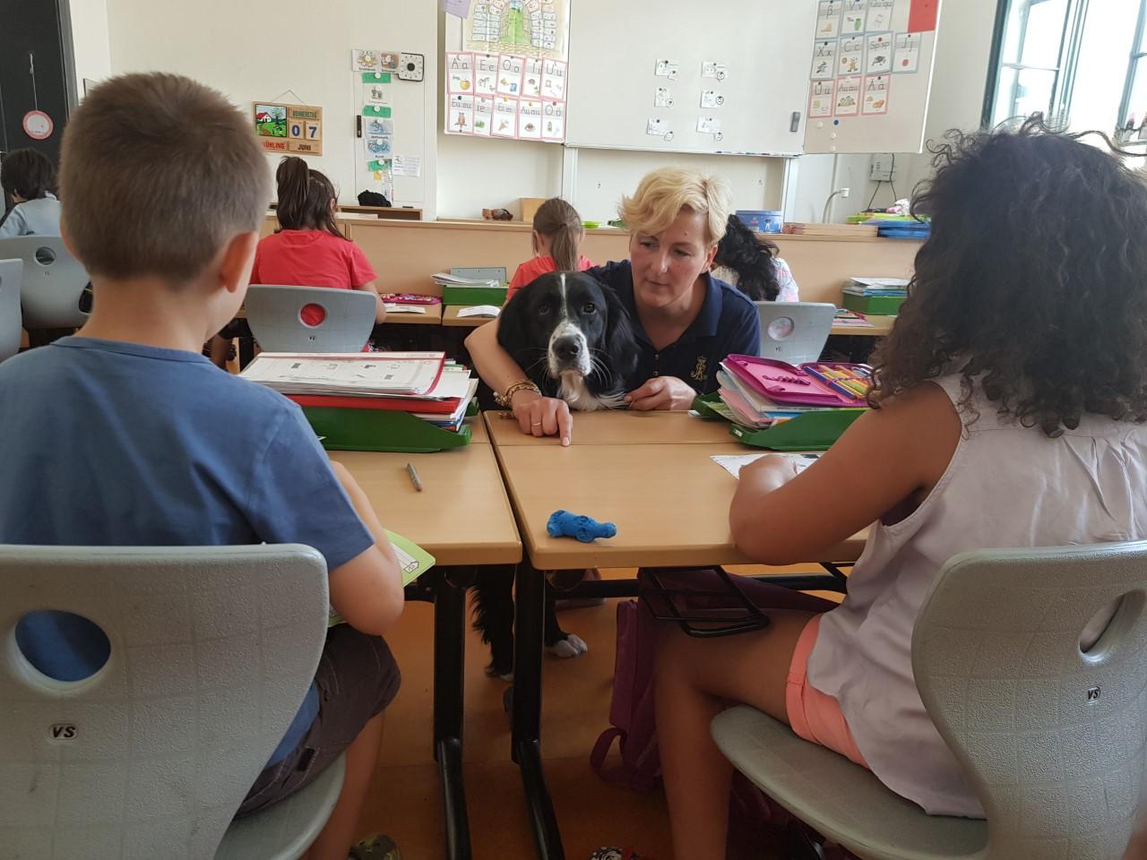 Schulhundausbildung
